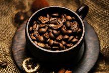 coffe climates