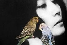 Flock together / #Birds #Fashion #Fancy / by Carrie Love