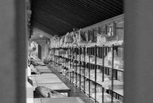 Storage/Archives