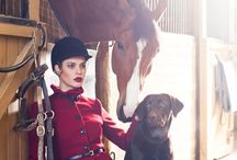 Equestrian & Equine / by Lori Matthews