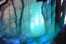 { Turquoise } / Everything Turquoise