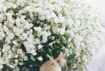 The Earth Laughs In Flowers / Sweet April showers do spring May flowers....