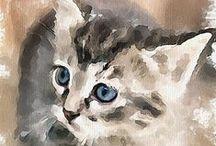 Cat In The Art <3