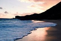 Ocean ❤