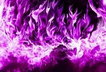 Purple~Passion