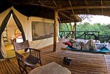 Basecamp Masai Mara / Hidden away under thatched roofs on a lush peninsula in the Talek River, bordering the Masai Mara National Reserve, you will find 12 spacious tents with spectacular views of the savannah.