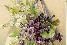 VIOLETTES Images / Inspirations pour le Pergamano sur le thèmes des violettes