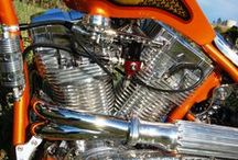 Orange Passion 2010 / At sturgis