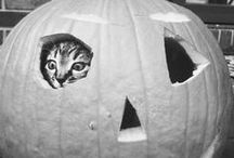 Of Haunted Hallows, Tricks And Treats