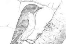 PERGAMANO OISEAUX Patrons / Modèles d'oiseaux pour le Pergamano
