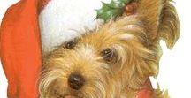 NOEL CHIENS / Les chiens fêtent NOEL