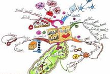 Cours - Mind Map