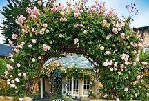 Garden design:  Il giardino delle idee / Idee per un giardino di fiori con un pizzico di magia