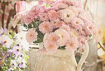 Colori: Rosa e rose per uno stile romantico