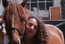 mes amour de poney