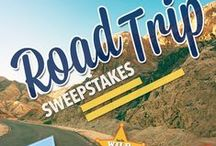 Sweepstakes and Contests / by Anita Duvall