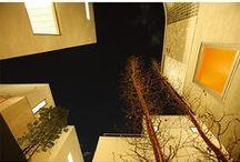 東京組|4組の建築家によるプロジェクト / 若松均建築設計事務所、みかんぐみ、納谷建築設計事務所、石黒由紀建築設計事務所。人気の建築家4組の手による、前代未聞の4棟建売プロジェクト。 よくある、同じ建物を並列した建売住宅ではなく、それぞれが個性を持ちつつ「街」として調和している。それぞれの建築家が、グランドデザインから考え、4棟が4棟を配慮し、出来上がったデザイン。