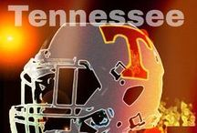 Tennessee  Vols / Love my Vols Sharing 9 separate Vol boards...newest is TN Vols 2014..just football  :) Vols for Life , Vol Party, VOLs Rock(message board),, Pat Summitt, Smokey, The Pride of the Southland.......and VOLS FOR LIFE    NEW BOARD....BOWL GAME 2015   / by Faye Forbes