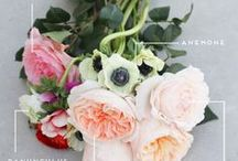 For the Love of Florals / by Flawed Perfection Jewelry