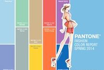 Pantone Color Report / All about the Pantone Color Reports for Spring & Fall 2014.