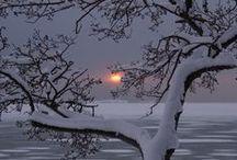 Winter wonderland, i love it!