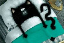 Chat Noir / by Amy Wallace