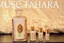 Collection Surrati