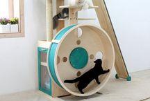 Little Paws Rescue Perth & Pet Toy DIY