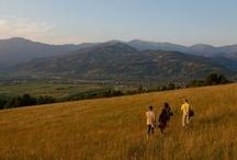 Ecoxtrem Trekking / Ecoxtrem Trekking se adreseaza grupurilor de turisti romani si straini care doresc sa transforme o vacanta in Romania intr-o experienta de neuitat! O incursiune pe 200 de trasee montane incluse in programe turistice de trekking