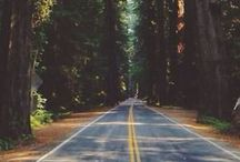 Take Me Anywhere / places around the globe