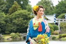 Japan / kimono wagashi  japanese culture