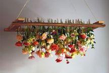 jardim / {a mesma essência} www.amesmaessencia.com