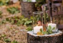 Special day / Wedding ideas