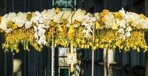 Floral Chandeliers / Hanging flowers and floral chandeliers for weddings.