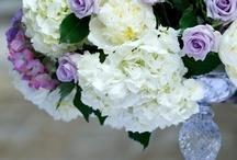 Wedding Ideas / by Stephanie Plear-Eves