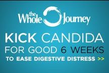 Candida Diet Friendly Foods / by Christa Orecchio - The Whole Journey