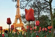 Parisian Obsession / by Julie Foster