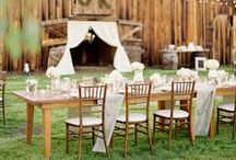 Weddings // Detail & Decor Inspiration / Wedding decor and details inspiration from ceremonies to receptions / by Angela Higgins
