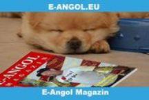E-Angol Magazin / Az E-Angol Magazin számait hanganyaggal ingyenesen letöltheted. Érdekes cikkek, nyelvvizsga tesztek, szókincs rejtvények, audio, üzleti angol cikkek.