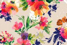 Les Fleurs  / Pour un beau jardin.