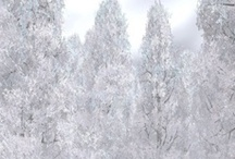 white Nature / Looking so amazing.