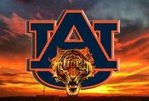 Auburn   Tigers   SEC / SEC Fan Zone Challenge! Which SEC team has the most followers? You decide!  / by Sissy