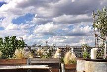 dernier terrasse