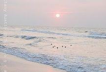 Vackra fotografier: havet