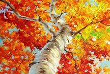 ALBERI - TREES - ARBRES - 木 / Gli alberi