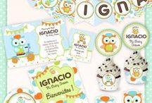 Owls Party for Boys / Fiesta de Lechuzas para Varones