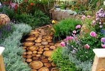 Gardening / Gardening Ideas from Paleo Passion Foods