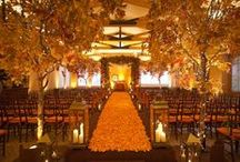 Quinn's Wedding / by Alixandra Bowman