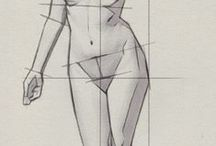 Human Body - proportions