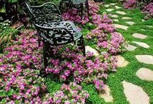Garden Goods / Dirt therapy at its finest! Dream along with us as we stroll some great garden pins.